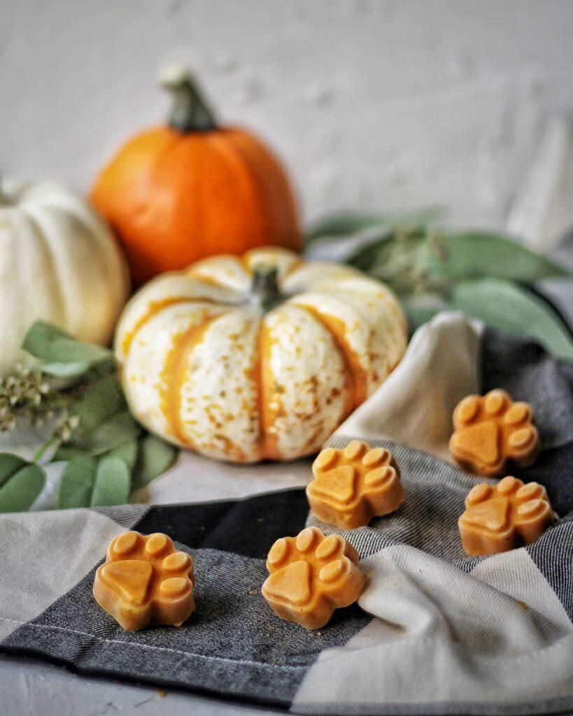 Peanut butter pumpkin frozen dog treats