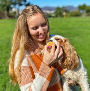 Peanut butter pumpkin frozen dog treats Dog licking treat